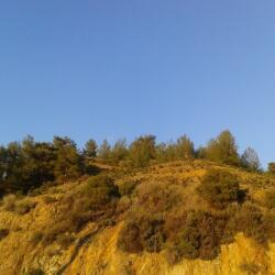 Land For Sale In Ag Ioannis With Beautiful Views Of Troodos Forest